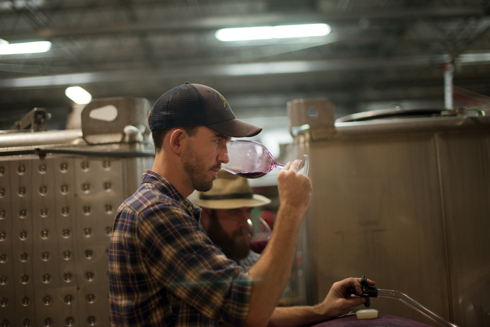 Assistant Winemaker Cody Rasmussen