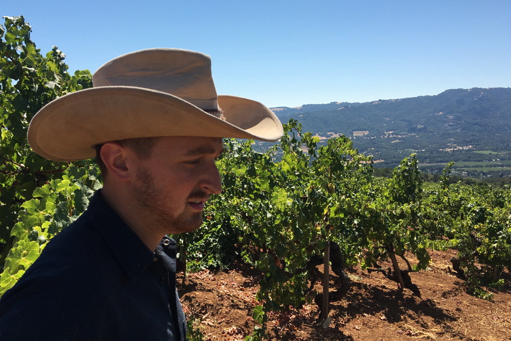 Viticulturist Jake Neustadt in a vineyard